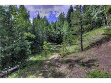 Conifer Mountain Rd, Conifer, CO 80433