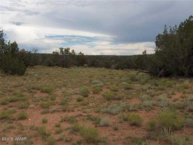 2276 itasca trl heber az 85928 home for sale and real estate listing