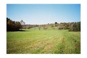 Dj Rye, Tennessee Ridge, TN 37178