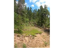 11723 Braun Way, Conifer, CO 80433