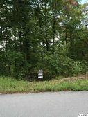Lot 117 Smokey Quartz, New Tazewell, TN 37825