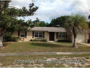 6503 Treehaven Dr, Spring Hill, FL