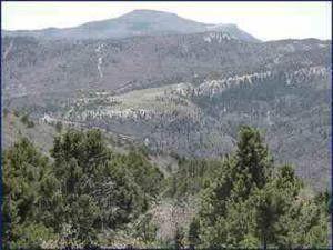 138 Acres Kanarra Springs Mtn, Kanarraville, UT 84742