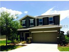 6205 Hawk Grove Ct, Wesley Chapel, FL 33545
