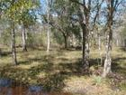 Photo of  Deer Run Rd, Damon, TX 77430