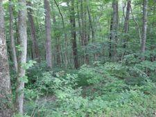 Upper Clear Creek Rd, Andersonville, TN 37705