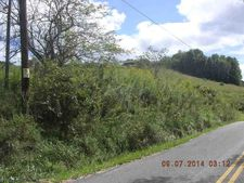 Tract B Berry Run Rd, Flemington, WV 26347