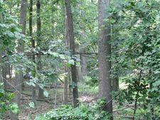 23905 New Mountain Rd, Aldie, VA 20105
