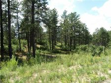 1789 Wild Timber Ct, Franktown, CO 80116