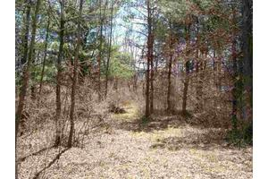 Lot 3 State Rt 20, Duanesburg, NY 12056