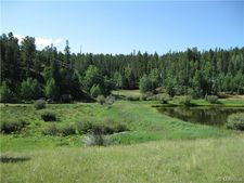 385 Shadow Lake Dr, Divide, CO 80814
