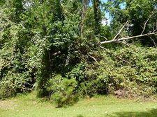 239 Green Tree Dr, Coldspring, TX 77331