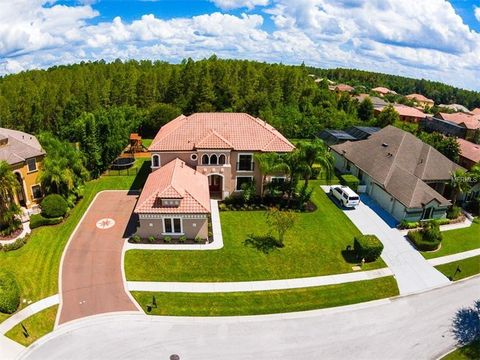land o lakes fl houses for sale with swimming pool