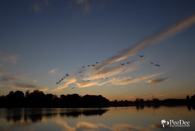 w lakeshore drive florence sc - photo#9