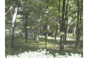 Tabor Rd, Cooperstown, NY 13326
