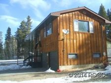 1803 Gold Dr E, Leadville, CO 80461