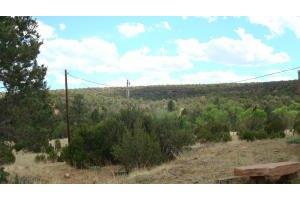 598 Red Bluff Rd, Mountainair, NM 87036