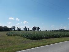10677 Rosedale Rd, Terre Haute, IN 47805