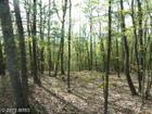 Supinlick Ridge Road, Mount Jackson, VA 22842