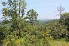 42 Mountain Ridge Rd, Plainview, AR 72857