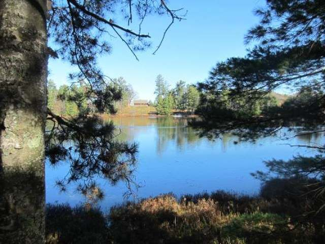 Lake Home For Sale Mercer Wi