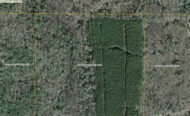 Mill Rd, Alford, FL 32420
