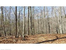 30 River Road Dr, Essex, CT 06426