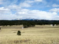 2660 Slater Creek Rd, Lake George, CO 80827