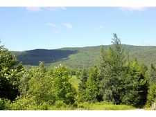 762 Maple Hill Rd, Mount Holly, VT 05730