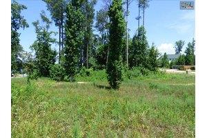 169 Cherokee Shores Dr # 17, Lexington, SC 29072