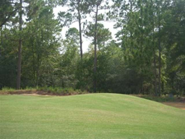 Reserve Dr Lot 2 Pawleys Island, SC 29585