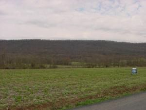 Property For Sale In Lickdale Pa