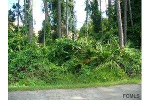 6 Kainite Pl, Palm Coast, FL 32164