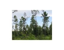 3.75Ac Homestead Rd, Lucedale, MS 39452