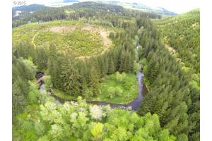 Poodle Creek Rd, Noti, OR 97461