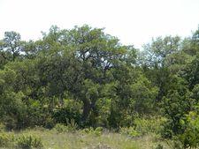 222 N Doehne Oaks, New Braunfels, TX 78132