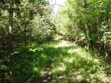 Lynn Creek Rd, Brooksville, MS 39739