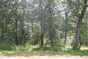 26 Woodglen Way, CAT SPRING, TX 78934