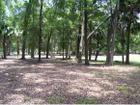 3292 Ne 170Th St, Citra, FL 32113