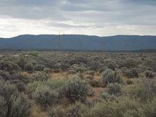 White Sage, Fredonia, AZ 86022