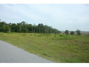 Lot 9 Kyles Loop Ne, Townsend, GA