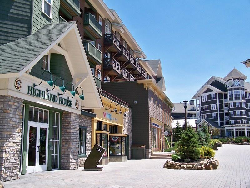 412 Highland House, Snowshoe, WV 26209 - realtor.com®