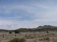 344 Cattle Drive Rd, Del Norte, CO 81132