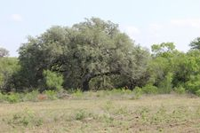County Road 160, George West, TX 78022
