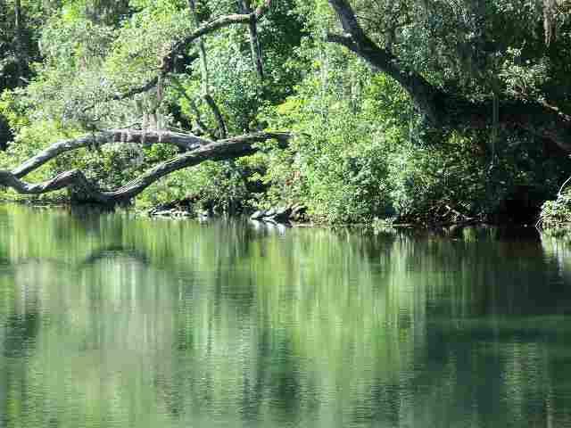 9 River Plantation Rd, Crawfordville, FL 32327 - realtor.com®