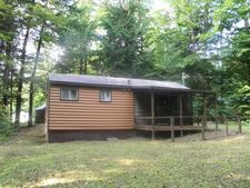 28 Line Ln, Gaines, PA 16921