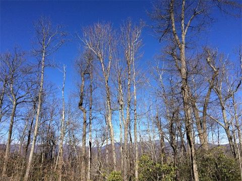 62 Sisters View Dr # 160, Black Mountain, NC 28711