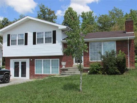 191 Morgan Ave, Olive Hill, KY 41164