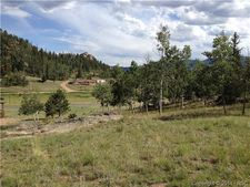 220 Pike Dr, Lake George, CO 80827