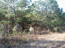 Cherry Tree Ln, Walterboro, SC 29488